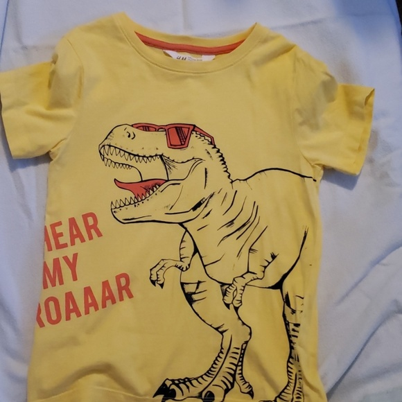 H&M Other - Boys dinosaur T Shirt